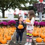 Crianças segurando abóboras num pumpkin patch